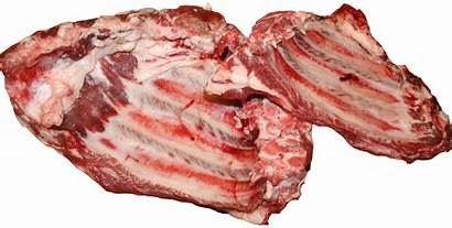 Meat Clipart Flesh Beef Transparent Fish Cliparts