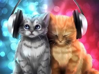 Cat Cats Kitten Kittens Wallpapers Background Desktop