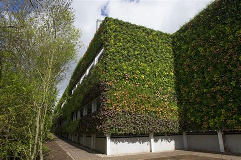 Who's Got The Biggest Green Wall?  Building Green