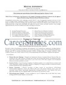 information technology resume layouts exles of hyperbole information technology resume getessay biz