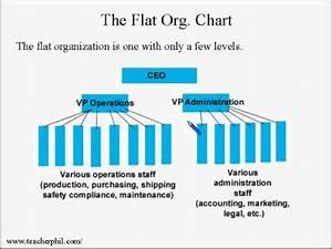 Disadvantages Of Organizational Structure What Are