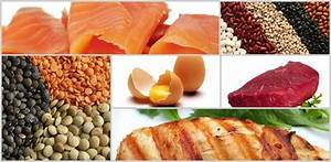 Good Protein  Foods For Fat Loss