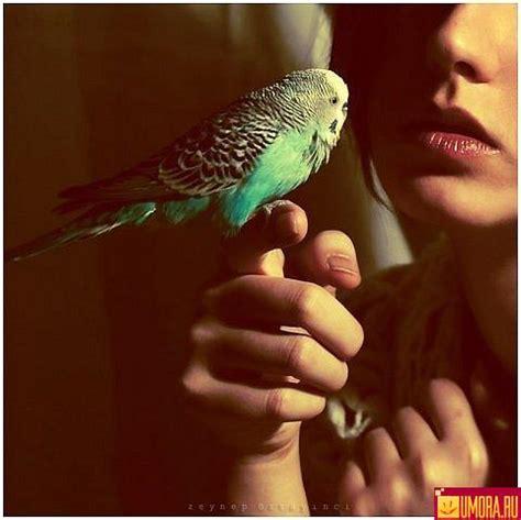 skaistas bildes - Spoki