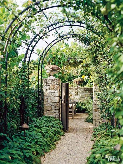 best 20 metal arbor ideas on