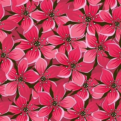 Pink Flowers Pattern Floral Vector Background Flower
