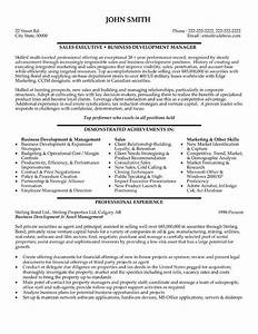 59 best images about best sales resume templates samples for Executive resume format download