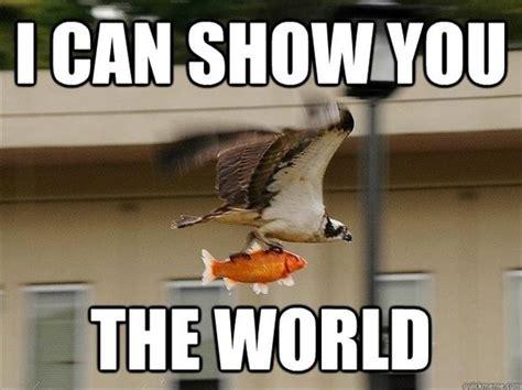 Funny Meme Animals - 30 funny animal captions part 11 30 pics amazing creatures