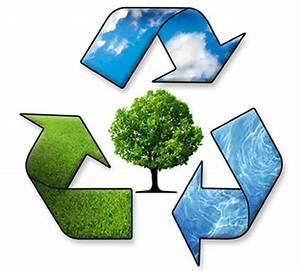 Sustainability | Manchester University