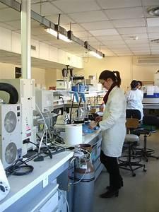 Laboratoire Alimentaire Occasion : laboratoires et outils communs plateforme technologie agroalimentaire umr qualisud ~ Medecine-chirurgie-esthetiques.com Avis de Voitures