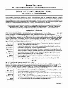 Sample resume executive summary best resume gallery for Executive summary resume samples