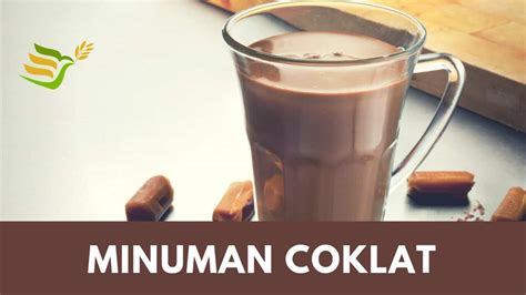 minuman coklat bubuk kelebihan review merk minuman
