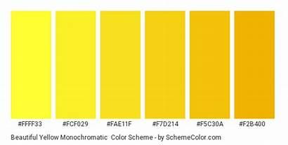 Monochromatic Yellow Scheme Palette Schemecolor