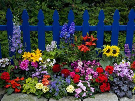 summer flower garden beautiful flower garden summer flowers garden bloom yard fence sunflowers gardening that i