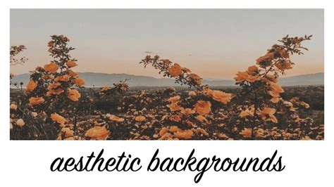 aesthetic flower background animations youtube