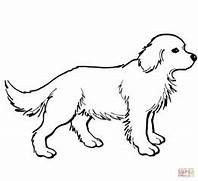 gallery golden retriever puppy coloring pages image 15 of 48