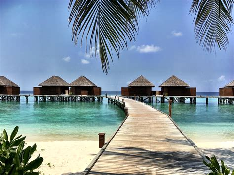 Is An Overwater Bungalow Worth The Splurge?-married With