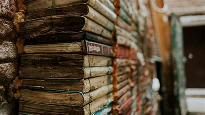 Books Reading Bunch Widescreen