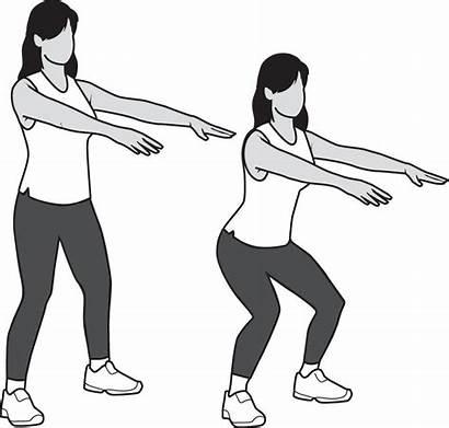 Knee Half Squats Aaos Orthoinfo Conditioning Program