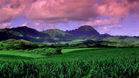 nature landscape field green mountains clouds sunset