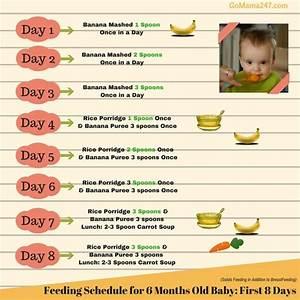 Food Diet 6 Month Old Baby Diet Plan