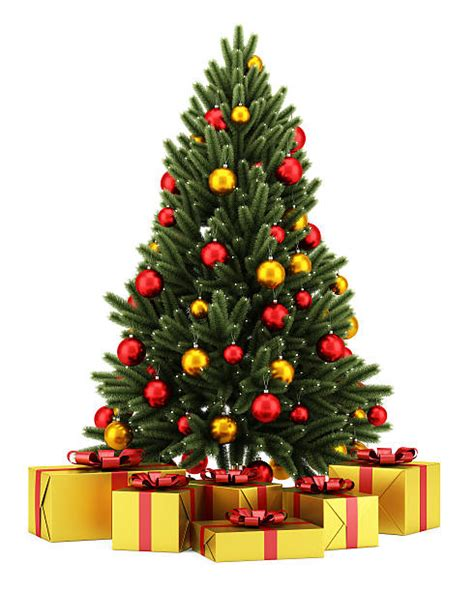 royalty  christmas tree pictures images  stock