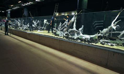 worlds largest nature aquarium project takashi amano  oceanario de lisboa