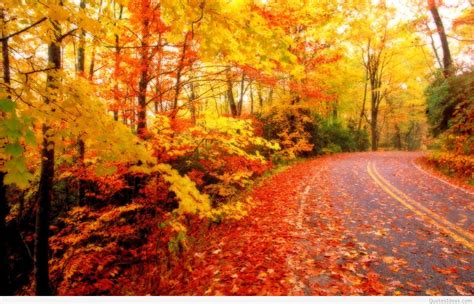 Autumn Wallpapers Quotes by Autumn Wallpapers Quotes Images Hd 2015 2016