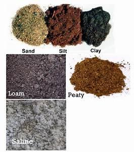 VERTICAL WINDOW FARMING: types of soil
