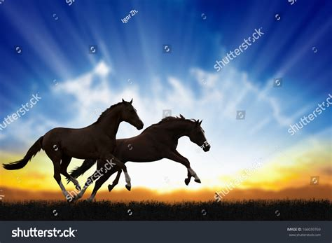 running horses peaceful background sunset horse chinese shutterstock pic