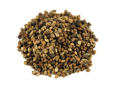 what is cardamom cardamom cardamom seeds savory spice