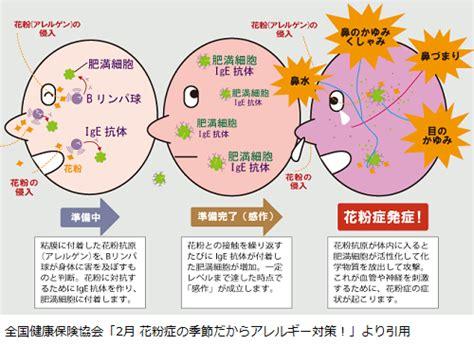 花粉 症 目 の かゆみ