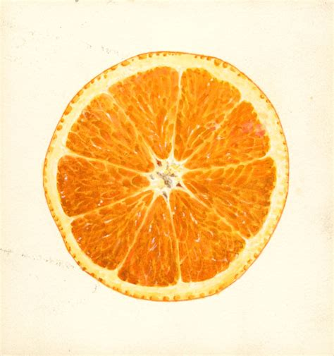 what color is an orange the etymology of quot orange quot which came the color or