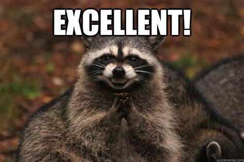 Excellent!  Evil Plotting Raccoon Quickmeme