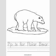 Pp Is For Polar Bear Worksheet  Twisty Noodle