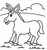 Coloring Pages Mule Donkey Printable Results sketch template