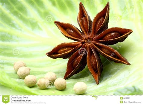 Anise And Seeds Stock Photography Image 8818302
