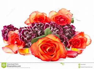 Beautiful Bouquet Of Red Roses With Carnations Stock Photo ...