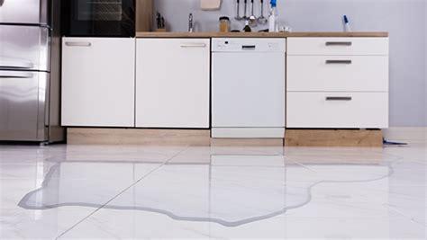 dishwasher leaking  front door codys appliance repair