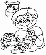 Frog Coloring Pages Frogs Printable Printables Printactivities Boy Birthday Coloring2print sketch template