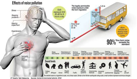 noise pollution  health multerland