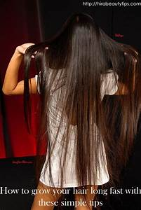 Hair In Water : how to grow your hair long fast with these simple tips beauty tips my hair and eggs ~ Frokenaadalensverden.com Haus und Dekorationen