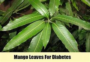 11 Herbal Remedies for Diabetes - Natural Treatments For ...