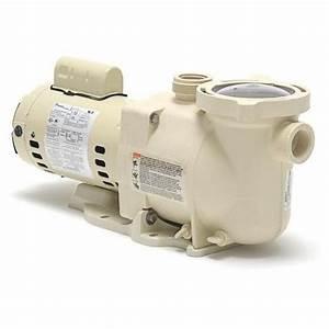 Pentair 340041 Superflo High Performance Uprated Pump