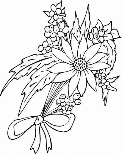 Flower Coloring Flowers Pages Pretty Printable Drawing