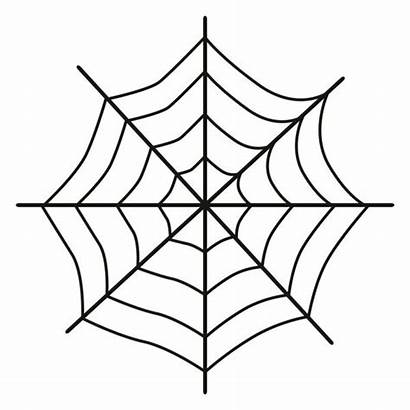 Icon Spider Spiderweb Background Vector Depositphotos