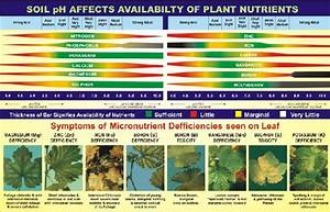 Science Soil Substrates Quot Best Practices Quot From