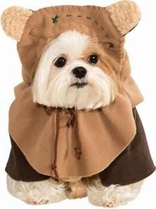 Video Pour Chien : costume de ewok pour chien funidelia ~ Medecine-chirurgie-esthetiques.com Avis de Voitures
