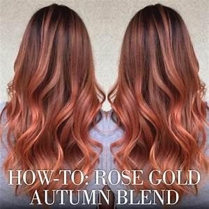 Ombré Hair Cuivré : luxe rose gold haircolor formulas cheveux coloration ~ Melissatoandfro.com Idées de Décoration
