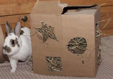 Kaninchen Spielzeug Selber Machen