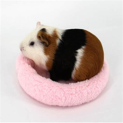 Meerschweinchen Bett Winter Tier Käfig Matte Hamster Igel